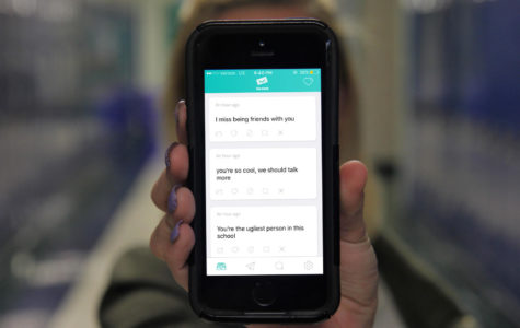 "New app ""Sarahah"" raises bullying concerns"