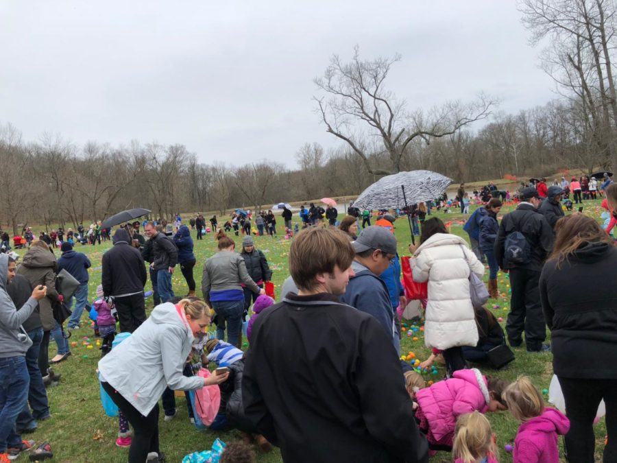 Participants+hunt+for+Easter+eggs+at+the+annual+%22Hunt+for+a+Cure%22+event.+The+event+was+organized+by+The+Leukemia+%26+Lymphoma+Society.