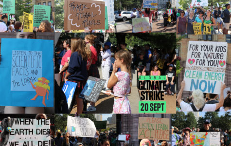 Signs for Change: St. Louis Youth Climate Strike