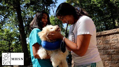 MHSNews | Students Adopt Pets in Quarantine