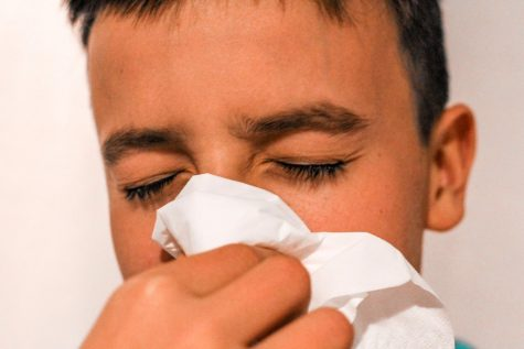 Previously just a normal bodily function, sneezing is now considered taboo activity during the pandemic.